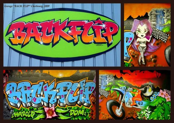 Garage Back Flip 2006
