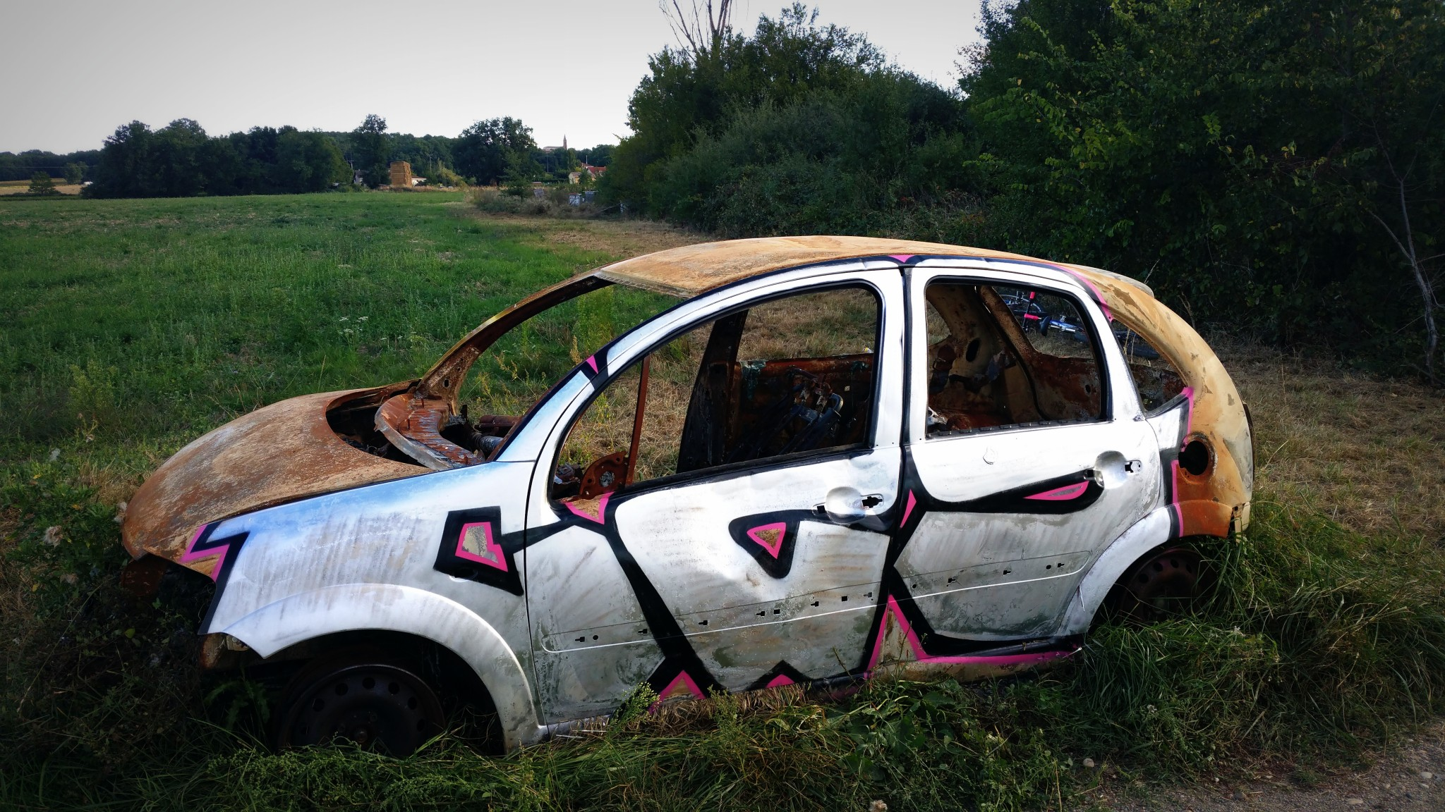 Carcasse 29 – Toulouse 2015